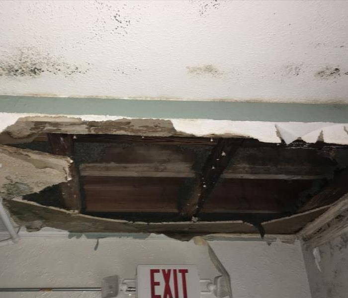 Broken Pipe Leads to Mold Damage
