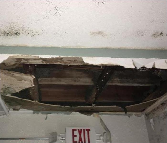 Why SERVPRO 4 Reasons Ceiling Tiles Become Discolored