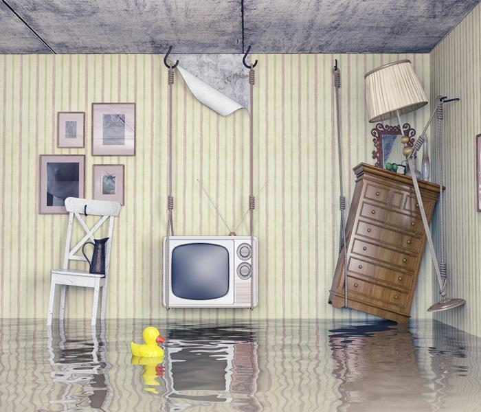 Water Damage How Water Damage Restoration Companies Can Help You in The Woodlands