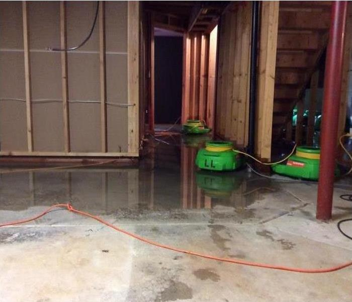 Water Damage Four Steps to Determining Whether You Can Save Your Carpet