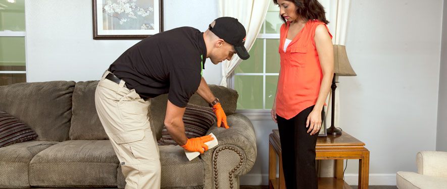 The Woodlands, TX carpet upholstery cleaning