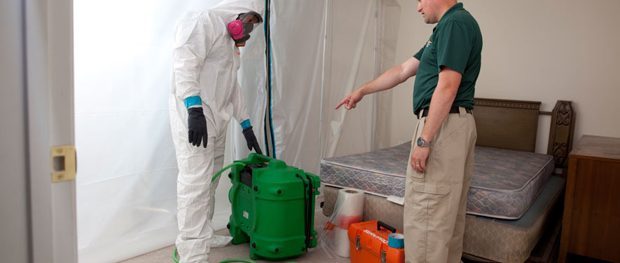 The Woodlands, TX mold removal process
